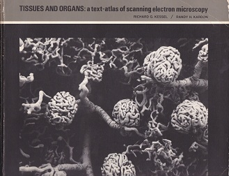 Secondhand Used Book - TISSUES AND ORGANS: A TEXT-ATLAS OF SCANNING ELECTRON MICROSCOPY by Richard Kessel & Randy Kardon